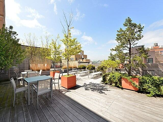 A large, open patio with plenty of seating and tall ornamental trees that bring life to the urban jungle.