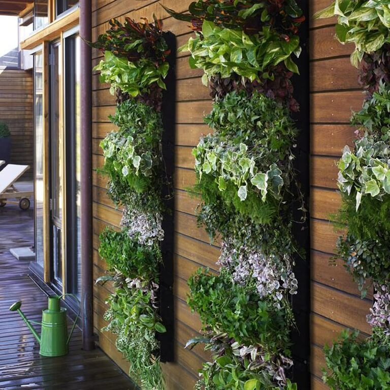 1z-vertical-garden Vertical garden racks are perfect for areas that receive plenty of sun and warm year-round temps. In more northern climes, making the rack detachable allows you to bring them inside once frost becomes a possibility.