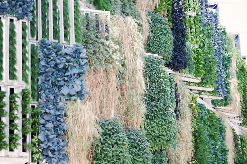 29-vertical-garden Green walls are more than artistic statements; such installations can cool the building, requiring less heating in the winter and less cooling in the summer, significantly lowering your overall energy use.