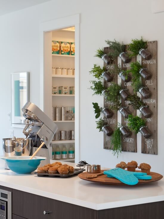 3z-vertical-garden Never again run out of fresh herbs. After labeling, this Mason Jar herb garden is affixed to your kitchen wall, allowing you to merely have to reach for one or more herbs to complete the perfect dish.