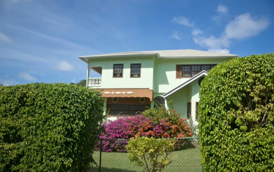 Tropical home with chain link fence with hedge