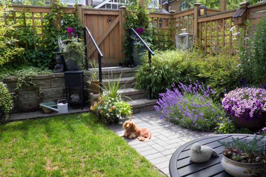Small garden patio with a latticed fence surrounding the terraced garden.