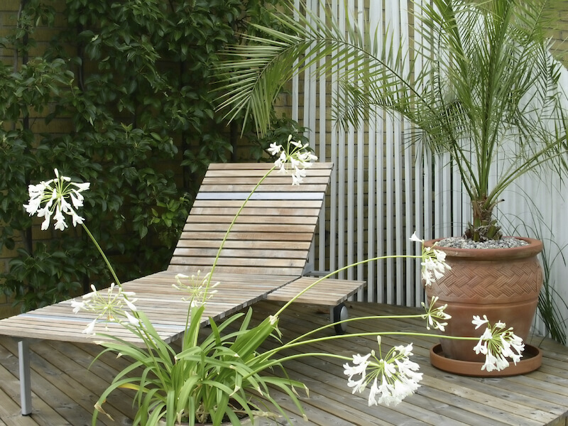 Even a much smaller potted palm can really help set the mood. It gives this simple wooden lounge chair the air of a tropical resort.