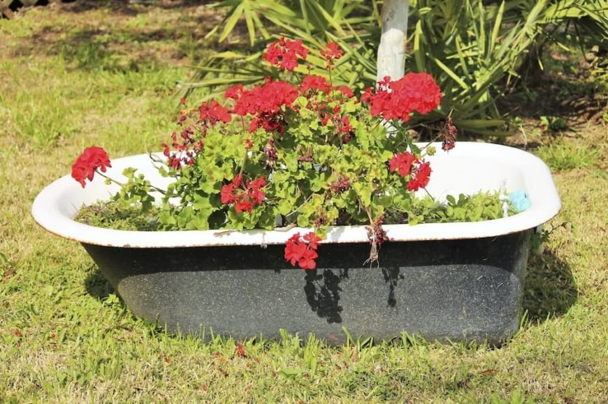 Even an old clawfoot bathtub can get new life as a planter. This idea is perfect for an eclectic or country garden.