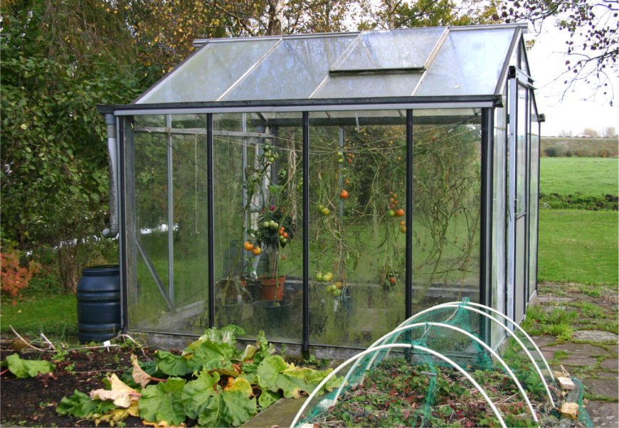 This simple greenhouse is being used to hang vegetables on suspended lines. Tomatoes seem to be the crop of choice.
