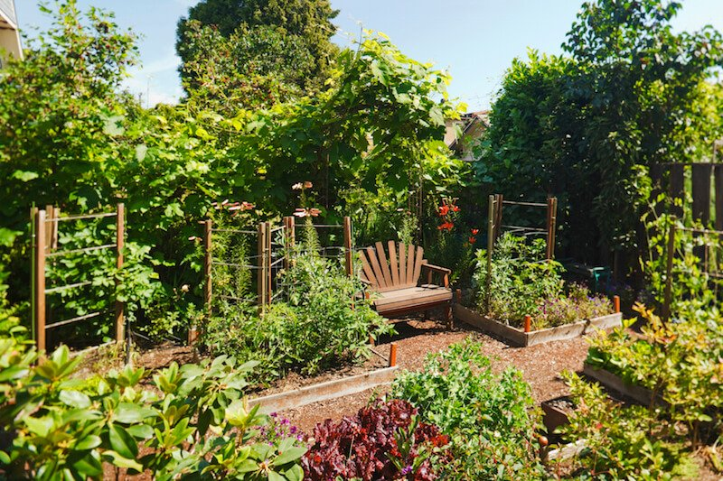 Here is a lovely vegetable garden with a seat for resting after a long day tending to the crops. You can sit here and enjoy the fruits and vegetables of your labor.