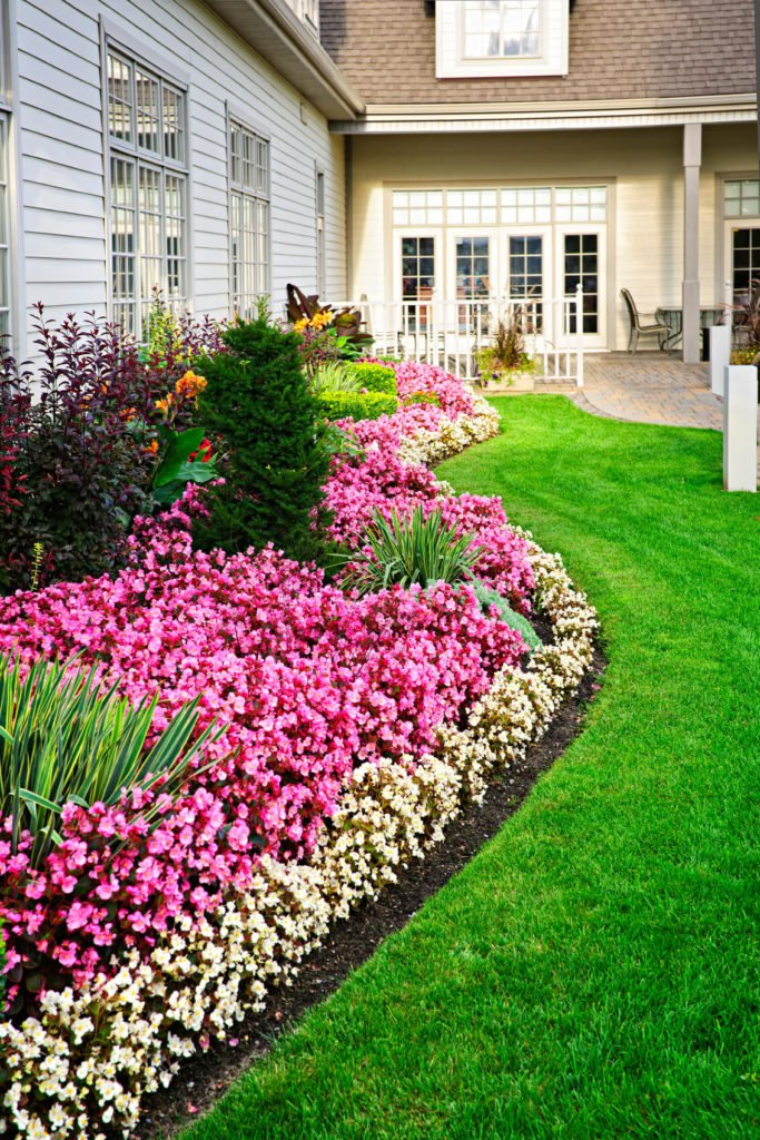 Flower colors can be used in patterns. Different styles of flowers create different effects. Here we see flowers making an almost solid color look that stretches around the exterior of a home.