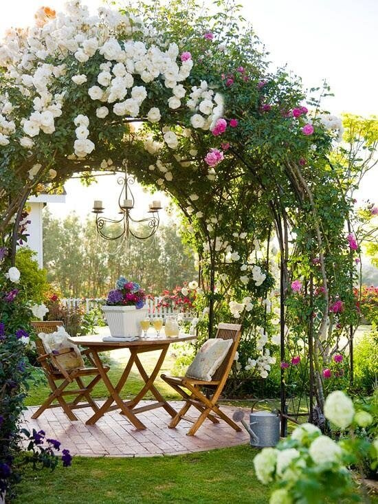 Roses are an excellent way to transform a small patio into a private oasis, perfect for afternoon tea or evening cocktails.