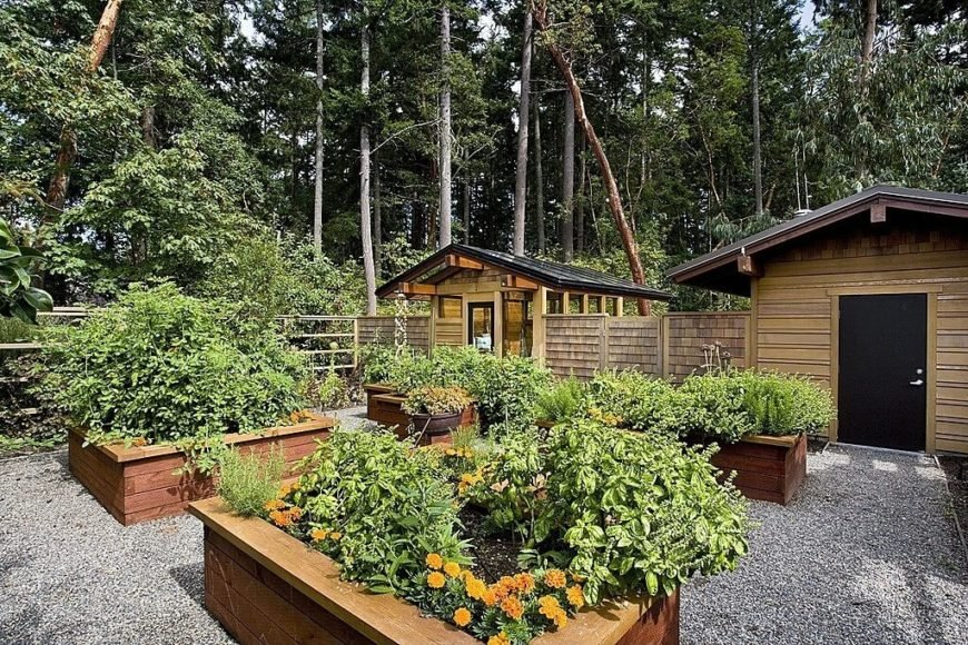 These tall raised garden beds have ledges around the edges. These ledges are not just visually appealing, they are also useful, as you may place tools on to these ledges while working.