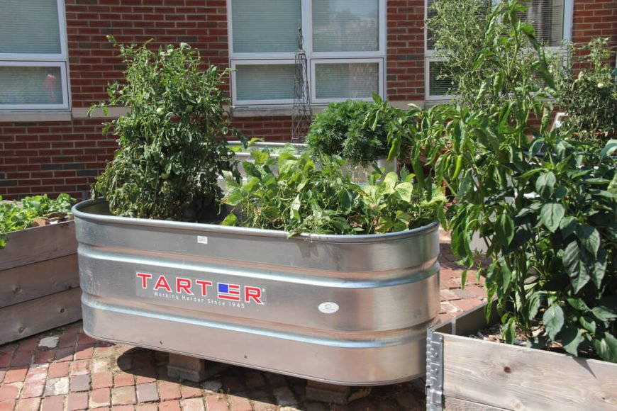 Here is a metal tub used as a garden bed. This sleek design is becoming more popular. It is mobile and easy to install as it is one solid piece. It may not fit every kind of landscaping, but has a modern look that fits urban areas well.