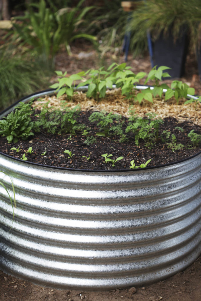 A cross section of metal pipe can be a good idea for a small raised garden bed. If this is an option, you may be interested in, you can look for discarded or extra bits of pipe that may be around. If you are lucky, a piece like this may not cost you anything.