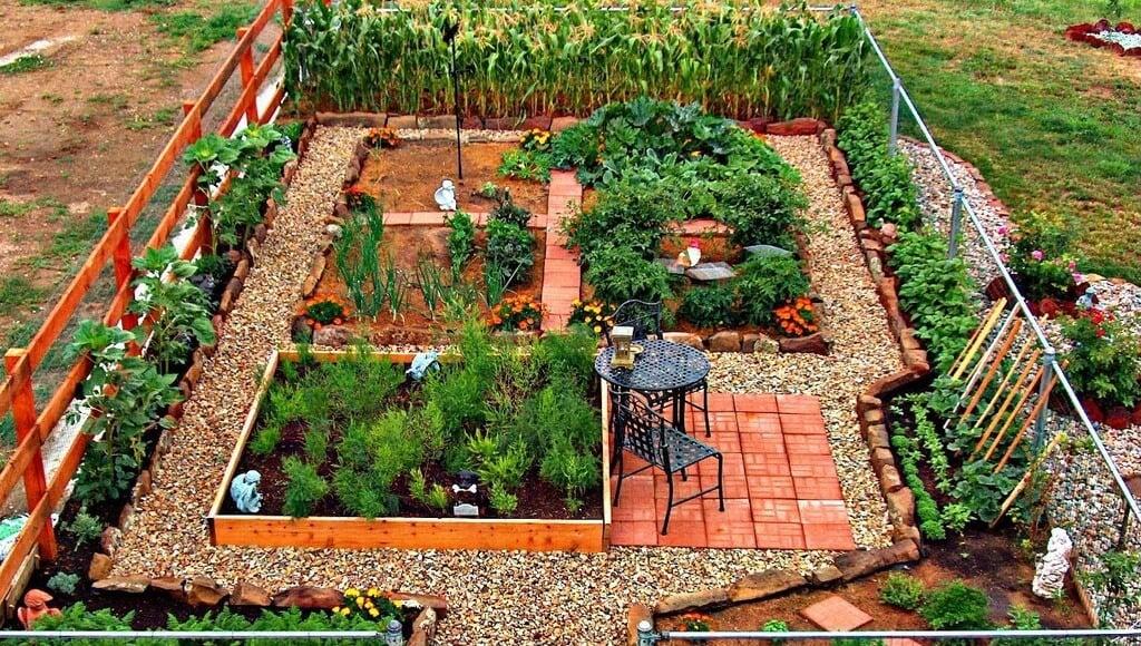 24 Fantastic Backyard Vegetable Garden Ideas Home Stratosphere