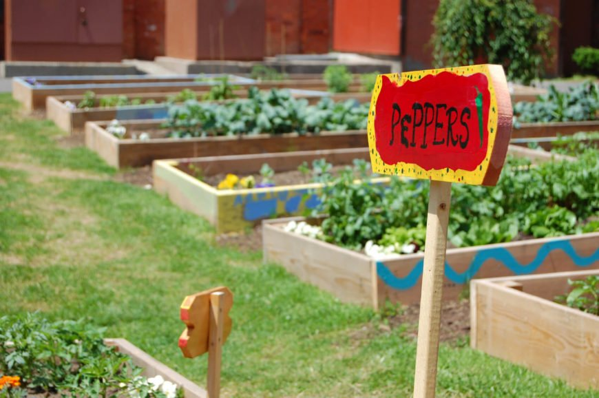 Here is a vegetable garden that uses a number of small raised garden beds to organize vegetables. Some vegetables need different care, so keeping them organized is always a good idea.