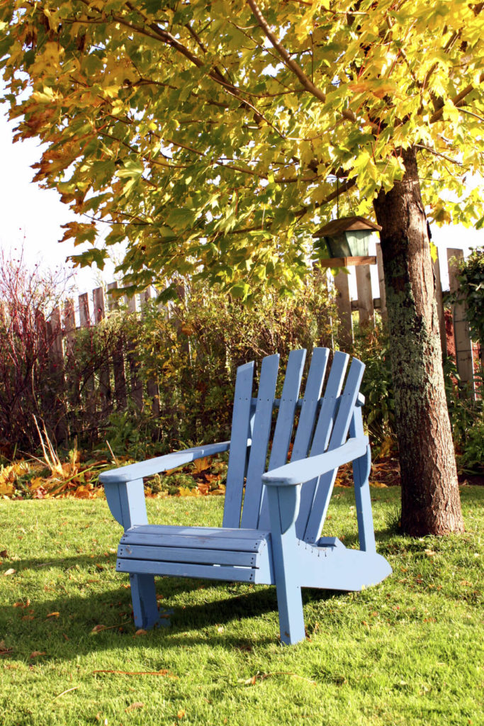 Depending on your tree and location, the shadiness of your spot may change. During a time of direct sunlight, shade can protect you from the heat, but later when the cool breeze rolls in it is nice to have the warmth of the sun.