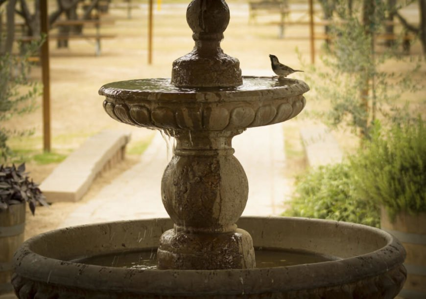 This classic fountain and bath is being visited by a bird looking for the perfect spot to splash around. A timeless fountain such as this will always look good.