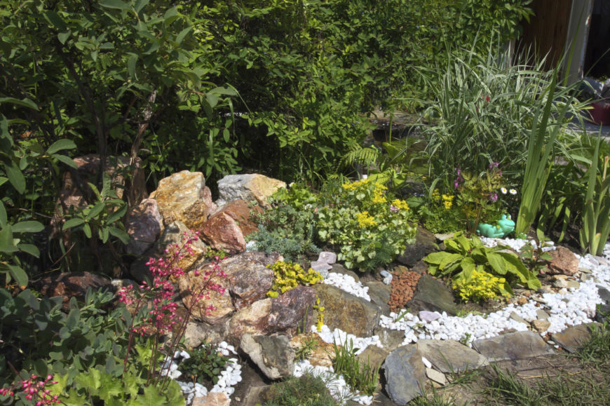 If you want to further build layers of texture and color you can use contrasting stones. Using small brightly colored rocks around larger darker toned rocks can make the larger stones stand out and draw attention.