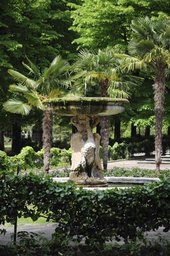 Palm trees work well around fountains and other structures. These trees add some texture and depth while letting the central piece take the spotlight and focus.