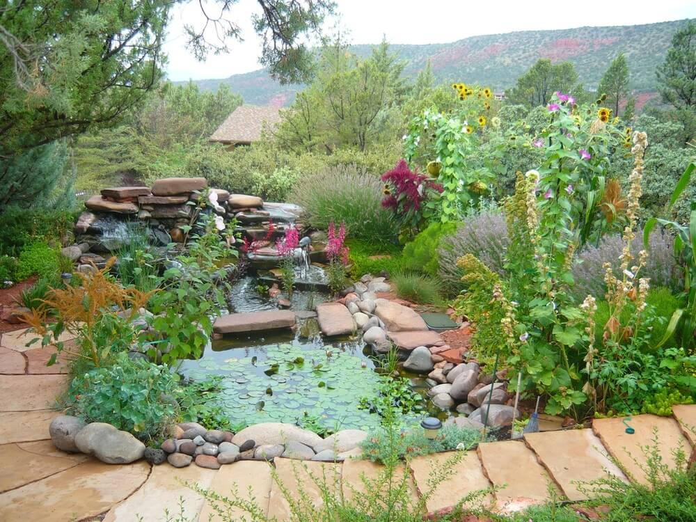 There are a number of perennials that pair well with ponds and other water features. Lavenders and water lilies are wonderful for pondside gardens.