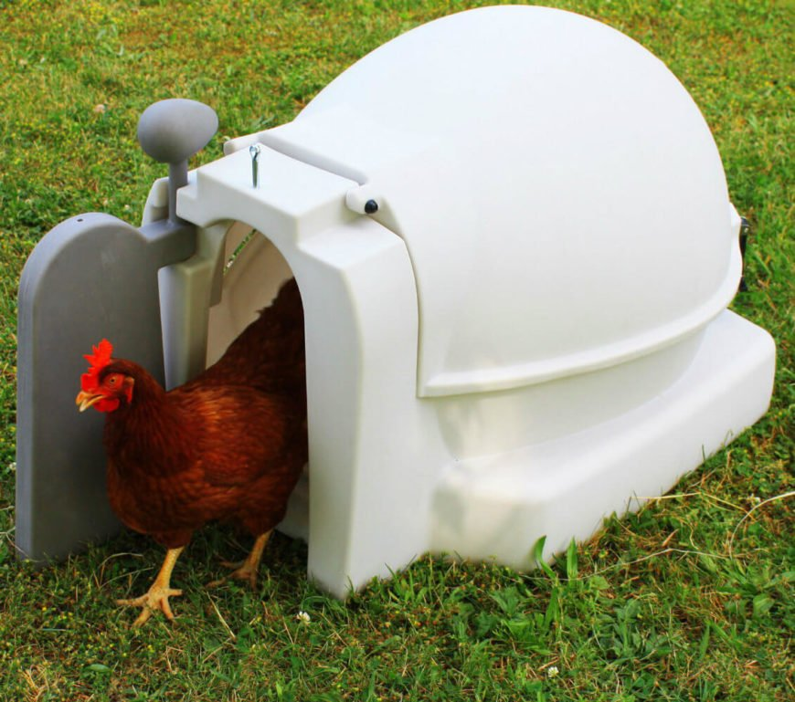 Not everyone has the space or desire to raise multiple chickens, which is why we love this ready-made coop for one or two birds. It's compact, portable, and perfectly shaped to house your bird!