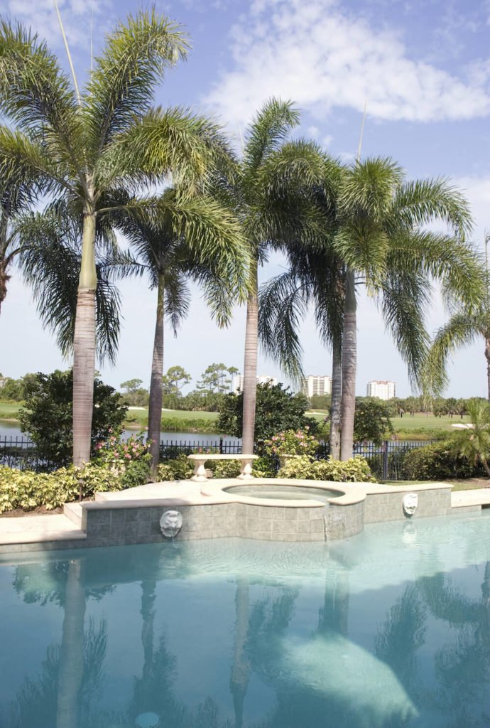 The perfect place for planting a few palm trees is around your pool. Palms can give your pool that extra step toward a tropical getaway. Let the trees help take you away to paradise.