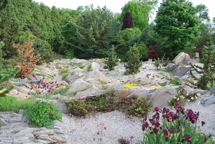 A stone garden can also be very large. Here we see a large and interesting stone garden. There are even a few trees in the midst of it. There are a few very large rocks here as well, all well placed to make a visually interesting space.