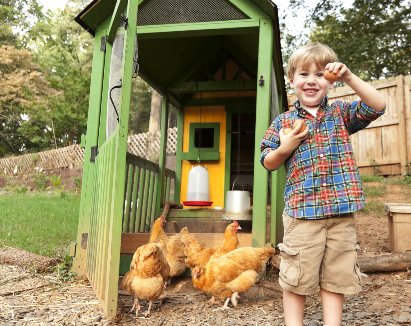 A big, bright, and most importantly, open design chicken coop is perfect for letting your little ones help out. The mesh screens mean that you can easily see inside, and the birds get a great view when they're roosting.