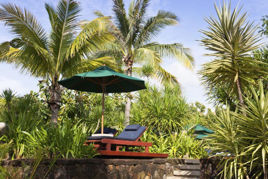 A mix of palms and tall grasses provides a lovely island feel. Put a reclining chair and umbrella in a spot like this and watch the wind sway the tall palms. You will be transported instantly.