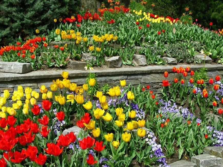 You can create depth in your garden with only two <a class=