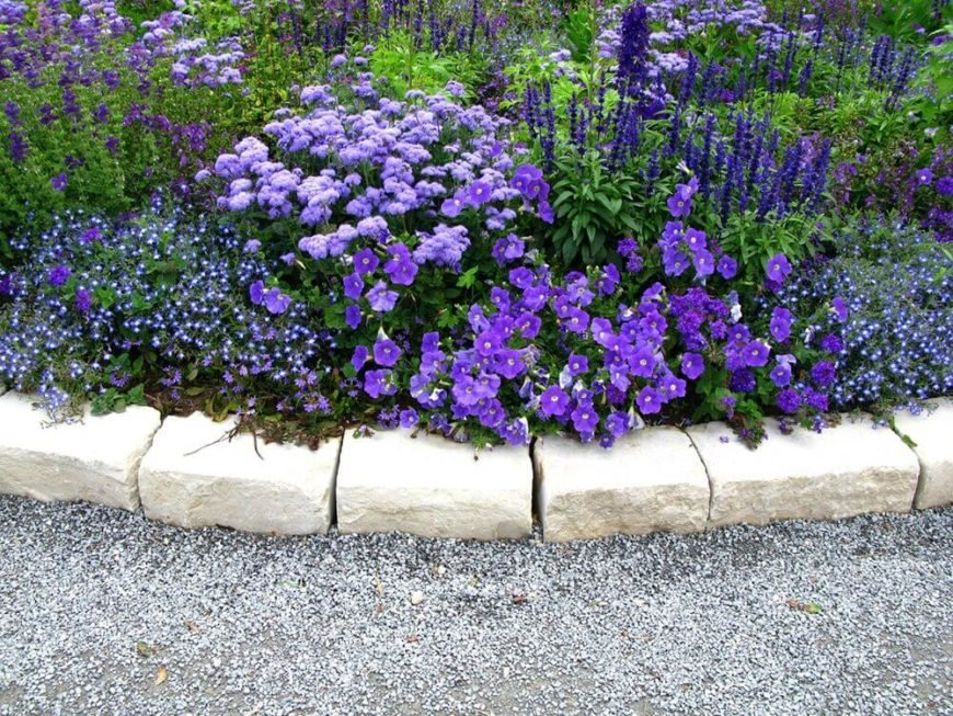 When selecting the right combination of perennials a garden can possess variety of texture but still match in color. All of the flowers in this garden are similar and complementary shades of purple. Year after year this amazing purple garden will return.