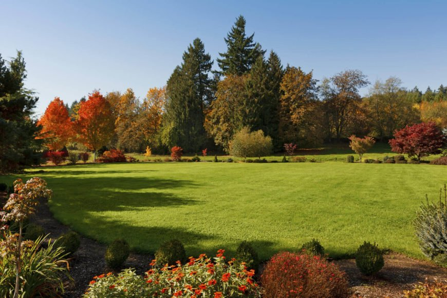 By mixing trees of different colors and sizes you can compose an interesting and varied profile for your treeline. This will be very evident in the fall when the leaves turn and reveal a wide range of colors.