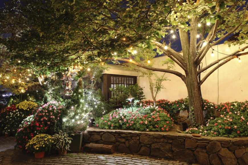 If you have a tree or two in your garden, you can hang strings of lights from the trees to create a magical firefly-like glow. Brighter bulbs can illuminate your flowers even more.
