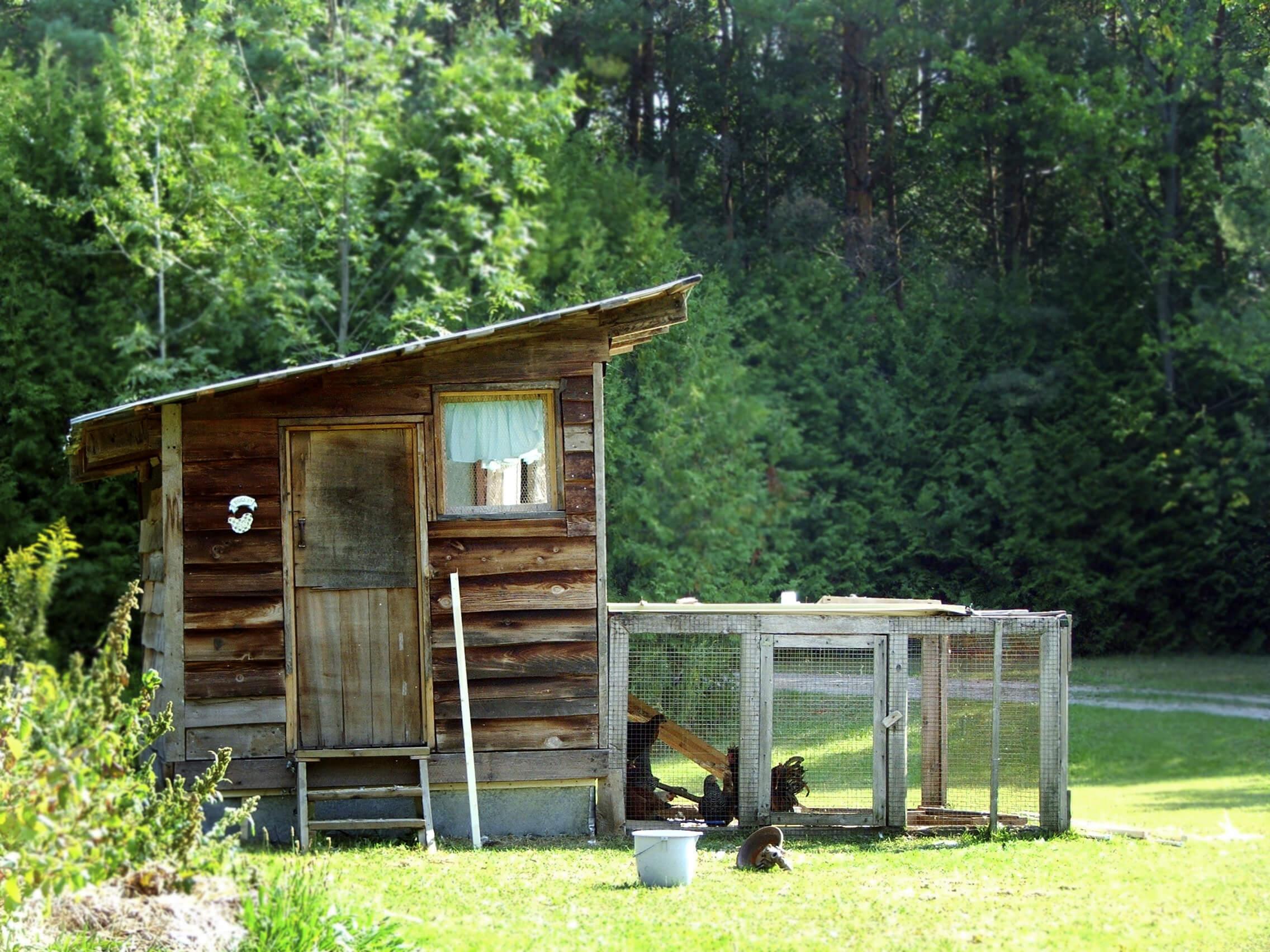 35 Backyard Chicken Coop Ideas