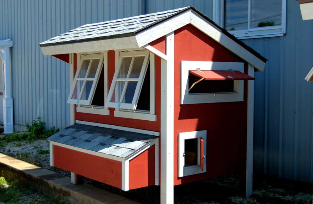 Mid-sized red and white coop house with windows and chicken access doors.