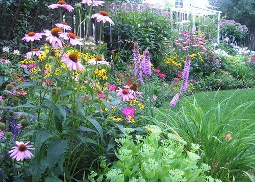 Your colors don't need to match to make a beautiful and appealing garden, however. In this garden, the colors are all over the spectrum. This gives the garden a wild and gorgeous natural feel.