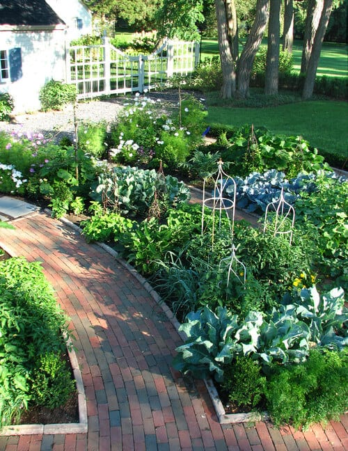 Here are some well kept brick paths lined with wonderful large gardens. These gardens act as dividers and cut the space up. If your large gardens contain vegetables you can also grow some great edible produce from your pretty plants.