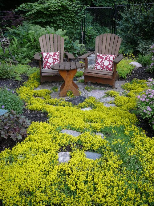 Here are a couple of wonderful Adirondack chairs in a lush and mossy patio area. This is a perfect place to wind down and take it easy.