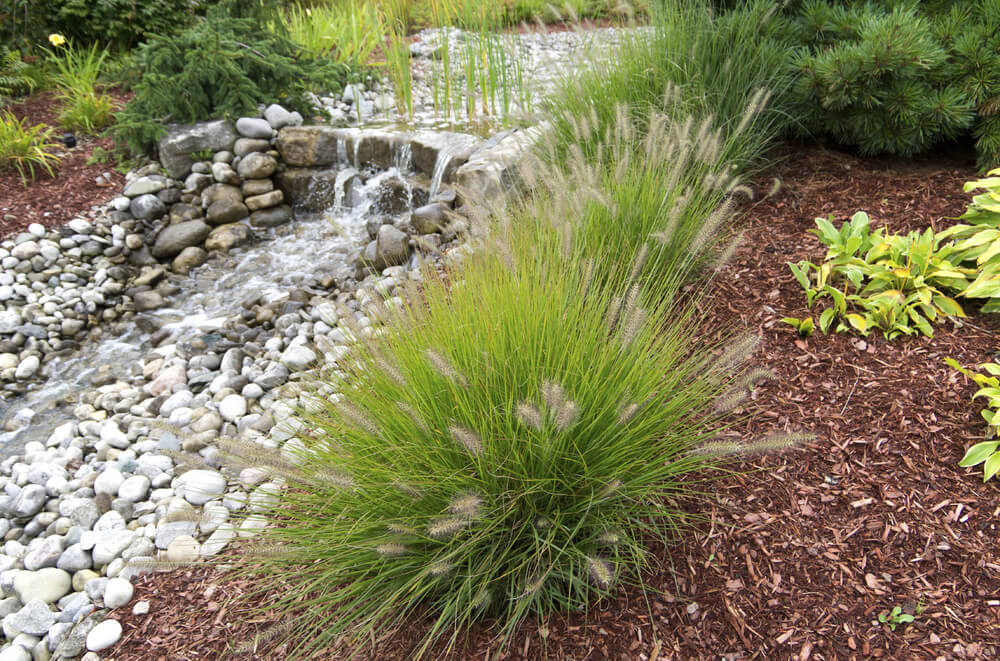 Tall grasses work well when planted in patches around features. This waterfall is elevated to a higher level with the grasses around it.