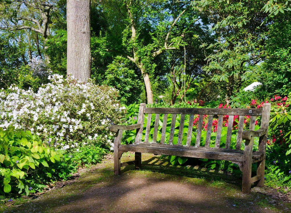 Let there be light and rain so that flowers bloom their best. This wooden garden bench is one of the witnesses of this magical creation.