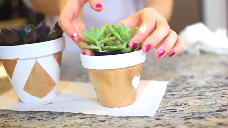 These adorable flower pots were once plain terra cotta, but have been transformed into glittery planters that any teenage girl would love to have in her bedroom. Planting easy-to-care-for succulents are the perfect way to add a little greenery to any space!