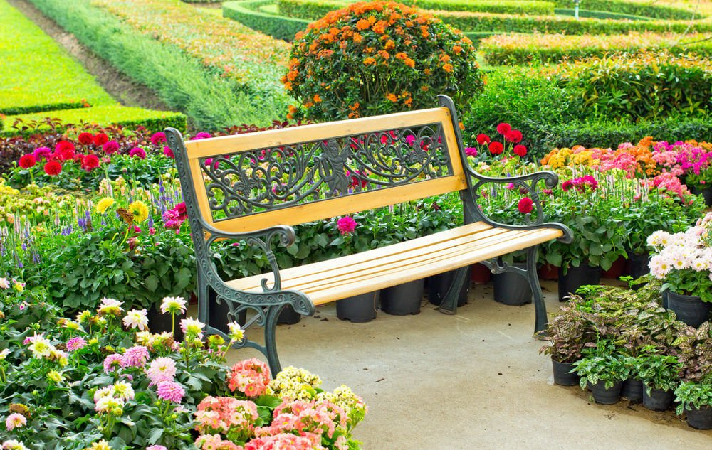 An elegantly designed garden bench with metal framing and a wood seat. Around it are the colorful blossoms of daisies and mums.