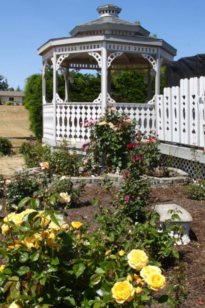 This gazebo is paired with tall flowering bushes as well as a large hedge. When using siding and fences with natural curves, your gazebo will fit better among your flowers and plants.