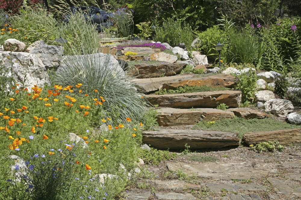 In green plant gardens you can mix different grass types for added texture and depth. Different grasses have different color profiles and looks. Mixing and matching gives a wilder and naturally occuring style.