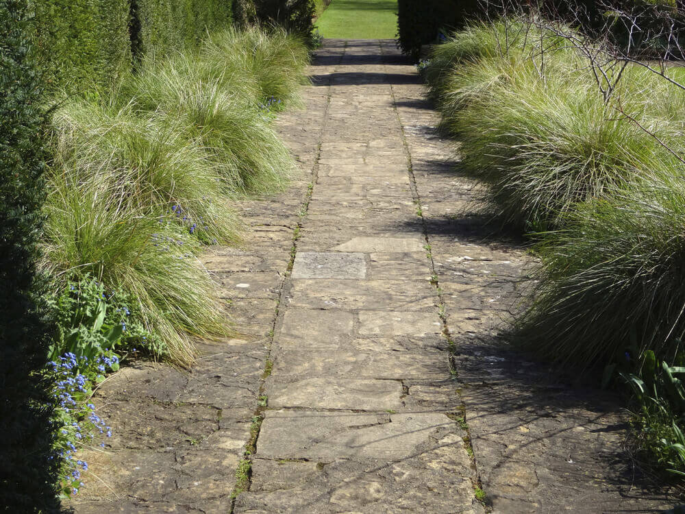 Tight spaces are perfect for plumes of grass to provide some visual interest. These kinds of grasses blend perfectly with typical grass sod. Use them to accentuate your lawn.
