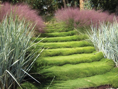 The grass here is covering a set of outdoor steps. Grass sod can cover almost any surface, including stairs. These soft grass steps will surely be pleasant to bare feet.