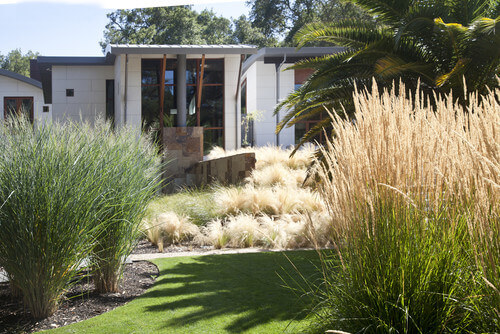 Here is a great patch of yard that has four kinds of grass. This nice well-maintained lawn is punctuated with two kinds of tall grass on either side. These tall grasses add great depth to the space.