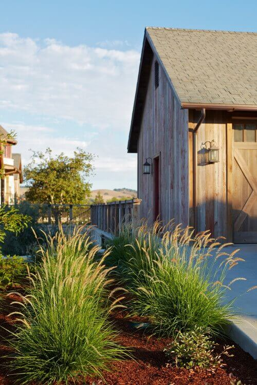 Here are some more patches of tall grasses used in a garden setting. These grasses are great at bringing plenty of depth and texture to a space like this.