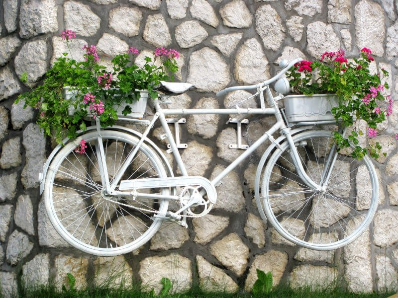 White painted bicycle holding pink flowers on front and rear mounted to a wall.