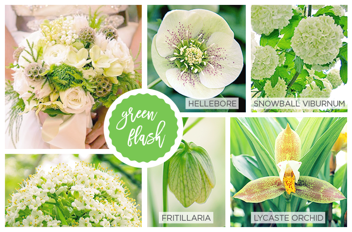 Green Spring flowers: hellebore, snowball viburnum, fritillaria and lycaste orchid.