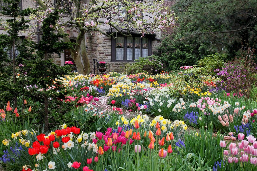 An assembly of blossoms await on each path's corner. Present are hyacinths, tulips, daffodils and a flowering tree.