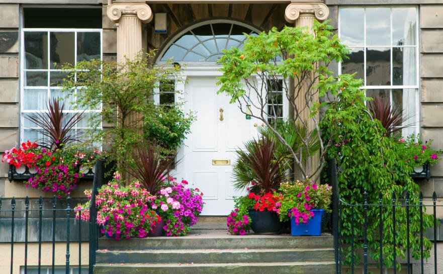 Potted trees and flowers crowding along the sides looks lush and green. Large plastic and clay pots planted with trees, non-flowering plants and colorful flowers gives more volume and life to a plain facade.